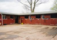 Willow Farm-Horseback Riding Holidays in Skegness, Lincolnshire, England, East Coast, Great Britain!