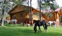 Beaver Guest Ranch - Horseback Riding Vacations in Lone Butte, British Columbia, Canada!