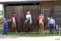 FÖJ working around Horses