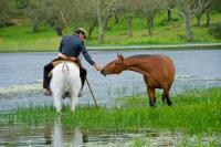 Horseback Riding Vacations and Dressage Lessons in Beautiful Alentejo, Portugal!