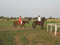 Furioso Horse Center - Horseback Riding Holidays in Vojvodina, North-Serbia!