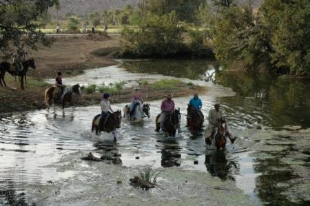 Horse Back Holiday India in Rajasthan  / All Regions