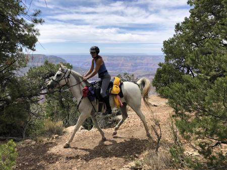 Holiday Company, B & B for Horses, Training Company, Dude/Guest Ranch, Ranch Resort, Ranch with Winter Snow Activities, Riding Stable, Pony Stable, B & B for Horsemen in Los Angeles