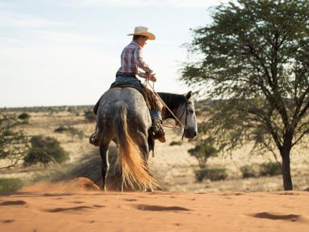 Holiday Company, Working Ranch, Ranch Resort, Farm, Western Riding Stable in near Mariental
