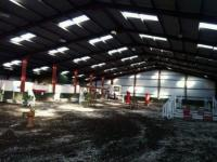 Markree Riding Stables is a truly fabulous equestrian centre, it's why we call it home.