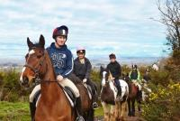 Learn English and Horseriding in Ireland. Fantastic forest trails, beach rides, accommodation