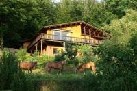 Appartement iLog House Cabin in Eifel Forrest - bring your own horse & dog- trekking - hiking