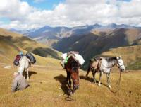 Horse trekking in the Caucasus Mountains (Georgia)