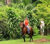 Vacaciones de equitación en Sítio Nosso Paraíso 80 kilómetros al este de Río de Janeiro, Brasil.