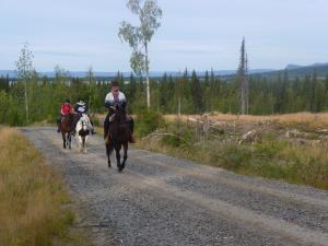 Horseback tour in the wilderness