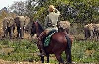 Makoa-Farm - join our exciting Horseback Riding Safaris or stay with us on our beautiful farm