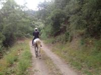 Horseback Riding Holidays in Spain on the trails of the Smugglers & Traders of yesteryear Andalucía