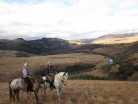 Working with Horsesa a private game reserve - Horseback Riding Holidays in ZuluWaters, South Africa!