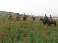 Kalout: Iran Eco-Cultural Tours, Iran Horseback & Camel Riding
