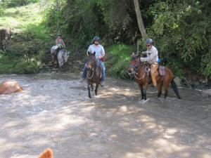 Ridingcolombia tailor made horse ride tours