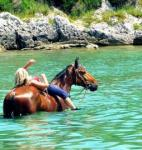 Explore the beauty and magic of Istria on horseback!Experience the life in nature, swim with horses!