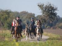 Horse farm Rohnstock: horse trekking station and equestrian vacation in Saxony