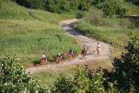 Husar Riding Center: Riding Holidays  in Romania in the wildest areas of Europe