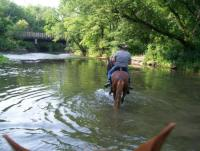Hiddenbrook Peruvians horseback riding adventurous for adults only in Minnesota