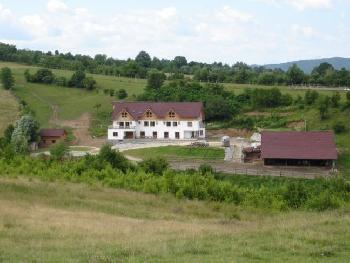 Equus Silvania in Sinca Noua, jud. Brasov / All Regions