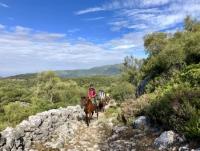 equiVentura – rutas ecuestres por la Sierra de Cádiz para jinetes con experiencia