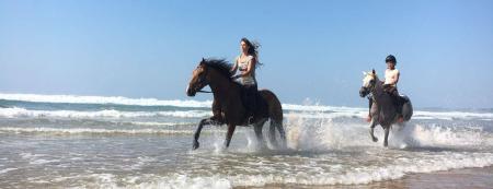 Horse Adventure Tours en  Vale da telha, Aljezur / Algarve