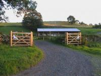 Assistance on small Icelandic Horse stud Farm in North West England