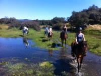 Riding centre la Rivera-  riding vacacions in the National Park in the North of seville