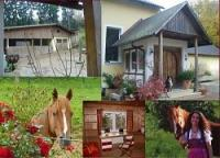 Riding Vacation also for families, trail riding , in Franconian Switzerland, Bavarian, Germany!