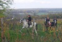 Baranja Ride - Horseback Riding holidays in Draz, Slavonia, Eastern Croatia for everyone!