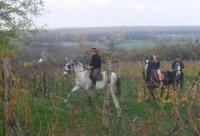 Baranja Ride - Horseback Riding holidays in Draz, Slavonia, Eastern Croatia for everyone!