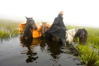 Cabanha Chapada Dos Bugres - Horse Riding Expeditions in Aparados da Serra, Santa Catarina, Brazil