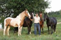 RAI riding - without whip, without spurs, without bridle - riding in Dasing, Bavaria!
