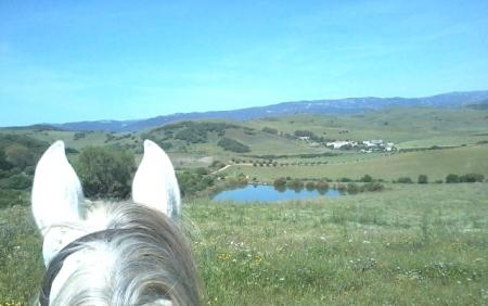 Holiday Company, Riding Stable, Western Riding Stable in Jimena de la Frontera