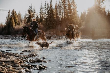 Holiday Company, Dude/Guest Ranch, Working Ranch, Ranch with Winter Snow Activities, B & B for Horsemen, Western Riding Stable in Big Creek, British Columbia