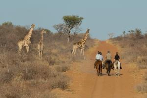 Riding tours in the Kalahari