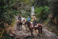 Discover Chile's wild south on horseback - unique volcanic landscapes and rainforests