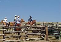 The Ponderosa Ranch - Horseback Riding Vacations in Crawford, Nebraska! Cowboy for a day or a week!