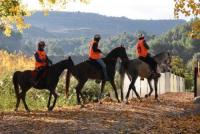 Endurance 365 - Tailor Made Riding Vacations for the Equestrian Adventurer - Valencia, Spain