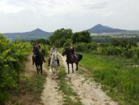 Riding near Lake Balaton in the 'Tapolcai' area at the foot of the Csobánc mountain