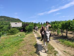 Horseriding holiday