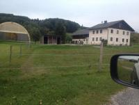 Einstellplatz in kleinem Pferdestall in Oberösterreich