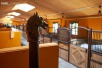 Exklusive Pensionsstall mit Hengsthaltung in Liechtenstein Dreiländereck FL/CH/A