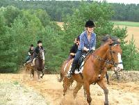 Horse riding Camps Luneburg Heath - Juniorclub Hostel for children and young people