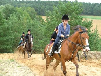 Holiday Company, B & B for Horses, Tournament Company, Breeding Company, Training Company, Riding Stable, Pony Stable, B & B for Horsemen, Children's Holiday Company in Hitzacker