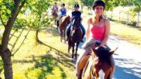 Hotel & Riding School - Wellnessfarm & Equestrian Horse Riding Luneburg Heath