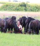Horse au pair / long-term intern in southern Germany