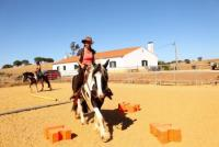 Offer internship/timeout on horse- and alpacafarm in Portugal