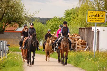 Holiday Company, Horse Trekking Station, Dude/Guest Ranch, Riding Stable, Pony Stable, B & B for Horsemen, Children's Holiday Company in Dinkelsbühl