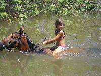 Riding vacation in the tropical part of Brazil. Riding on the beach and in the rainforest